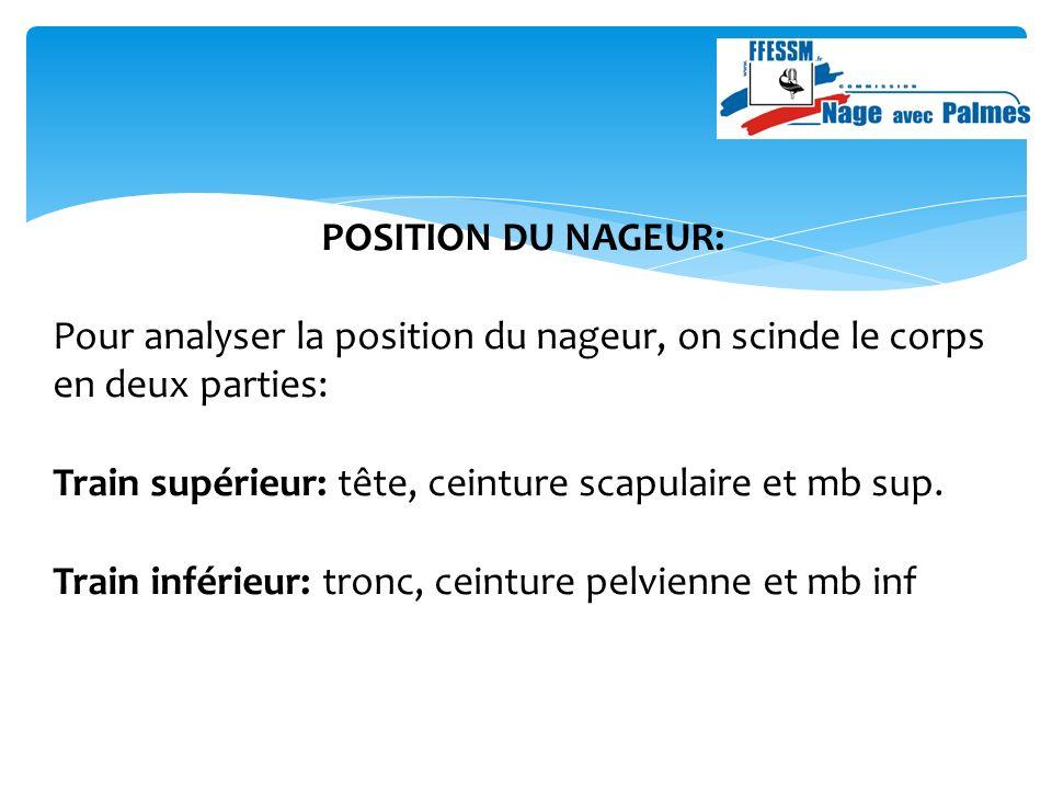 POSITION DU NAGEUR: Pour analyser la position du nageur, on scinde le corps en deux parties: Train supérieur: tête, ceinture scapulaire et mb sup.