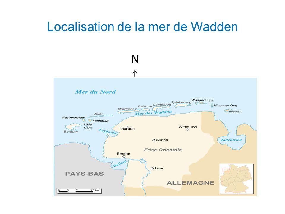 Localisation de la mer de Wadden