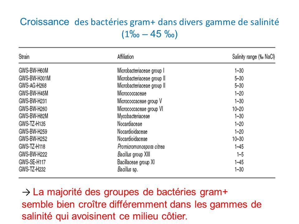 Croissance des bactéries gram+ dans divers gamme de salinité (1‰ – 45 ‰)