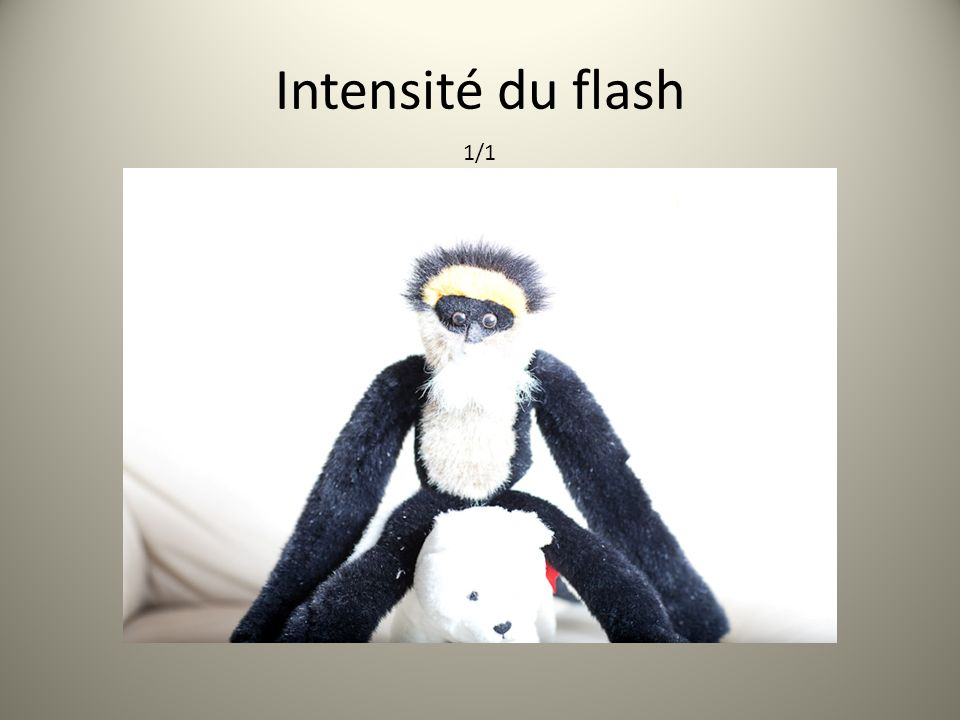 Intensité du flash 1/1