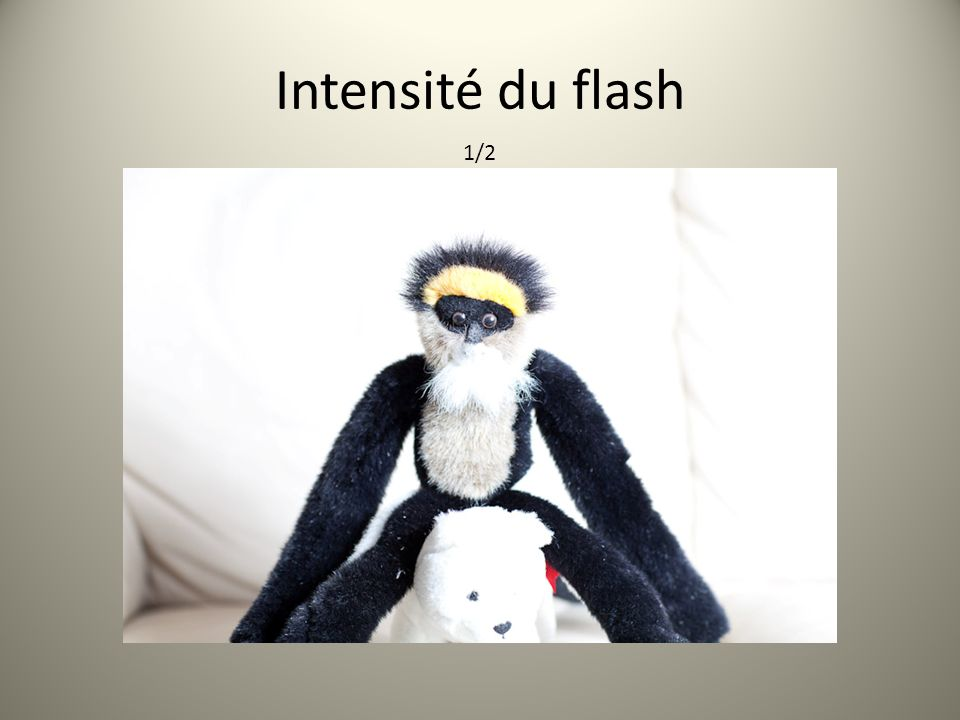 Intensité du flash 1/2