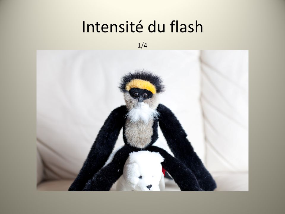 Intensité du flash 1/4