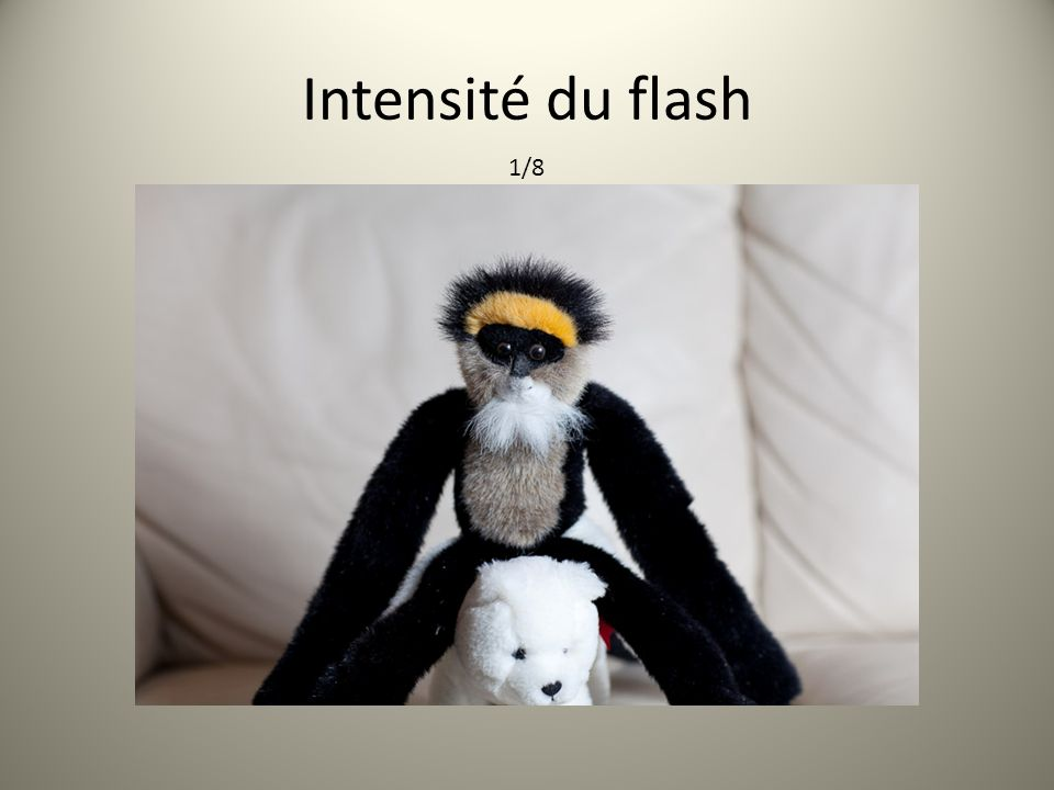 Intensité du flash 1/8