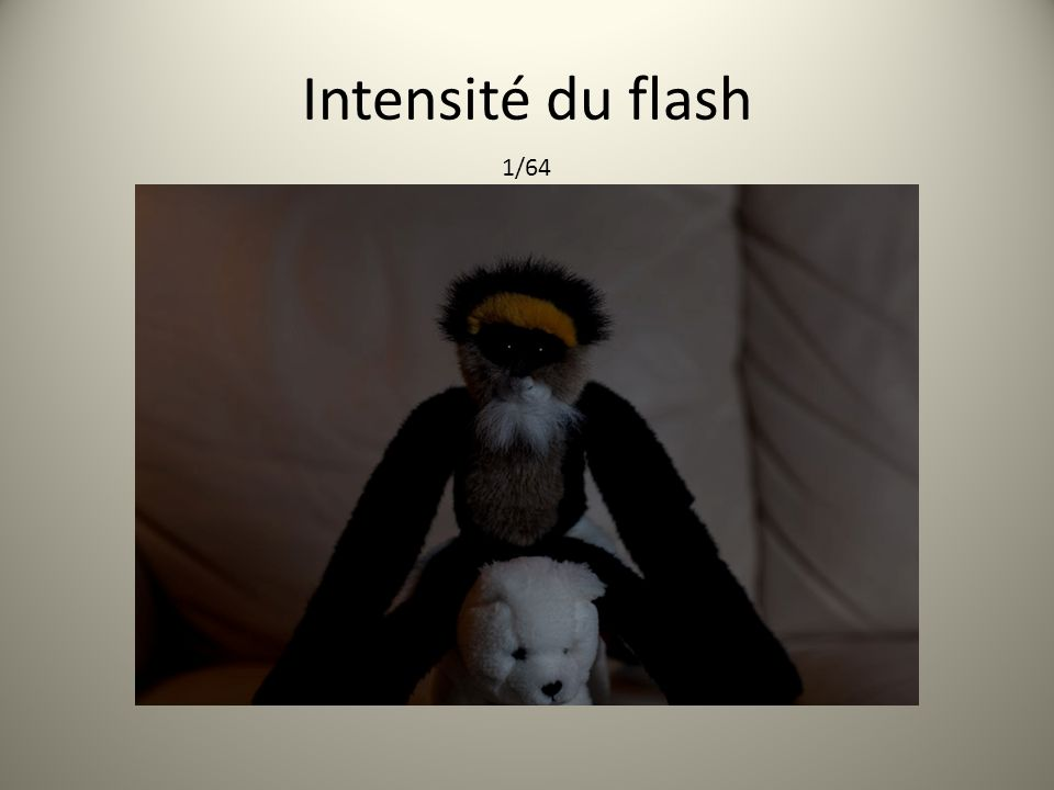 Intensité du flash 1/64