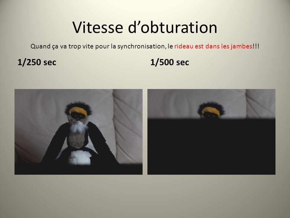 Vitesse d'obturation 1/250 sec 1/500 sec
