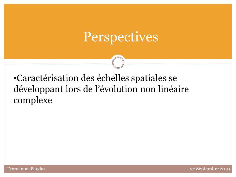 Perspectives Caractérisation des échelles spatiales se développant lors de l'évolution non linéaire complexe.