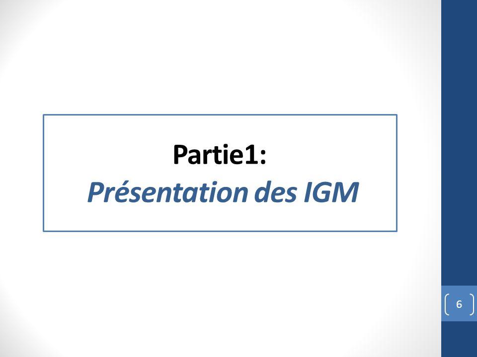Partie1: Présentation des IGM