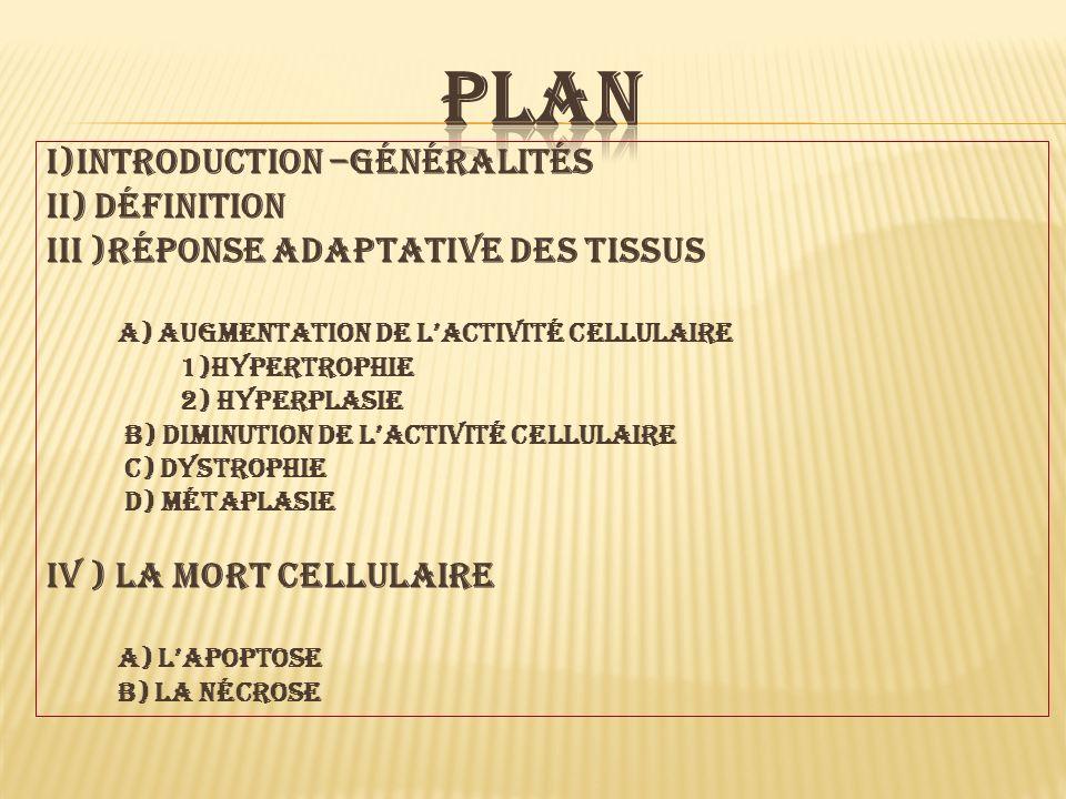 plan I)introduction –généralités Ii) définition