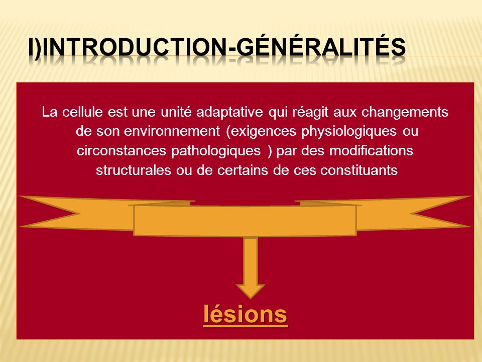i)INTRODUCTION-généralités