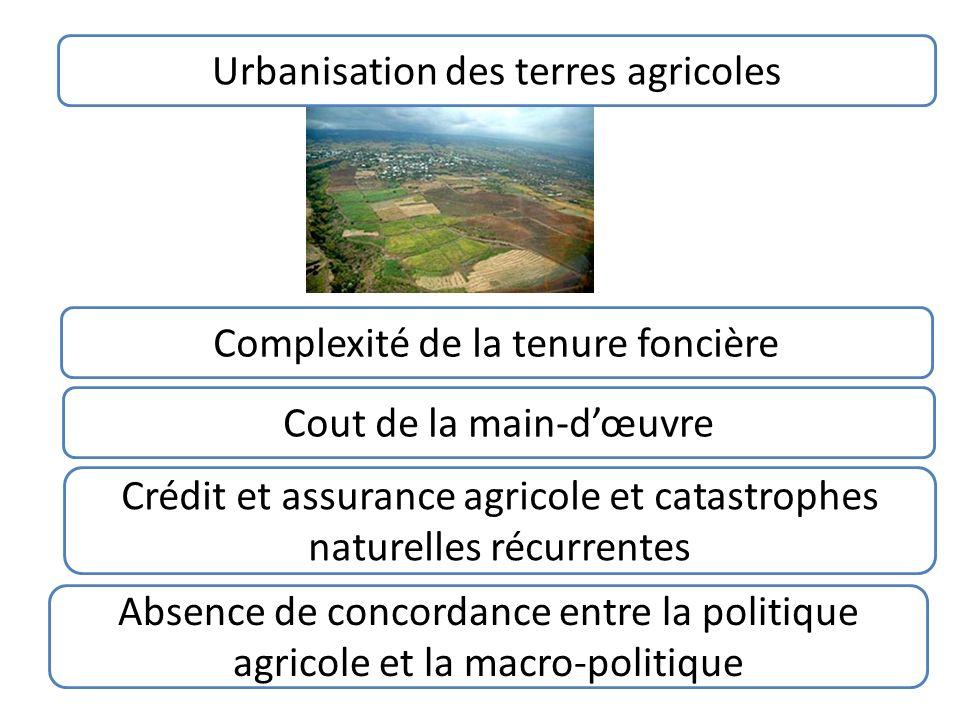 Urbanisation des terres agricoles