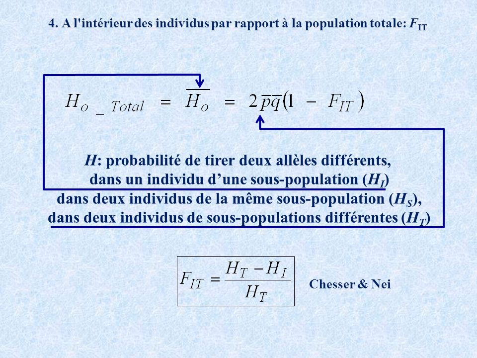 H: probabilité de tirer deux allèles différents,