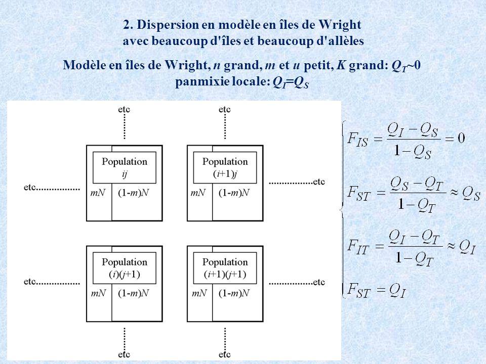 2. Dispersion en modèle en îles de Wright