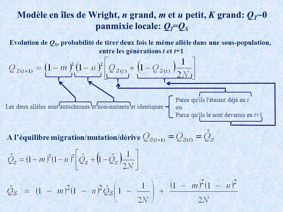 Modèle en îles de Wright, n grand, m et u petit, K grand: QT~0