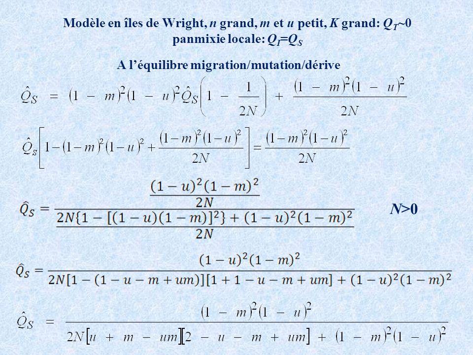N>0 Modèle en îles de Wright, n grand, m et u petit, K grand: QT~0
