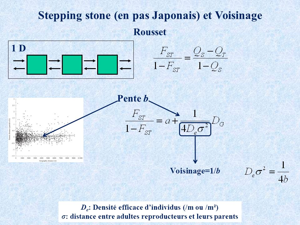 Stepping stone (en pas Japonais) et Voisinage