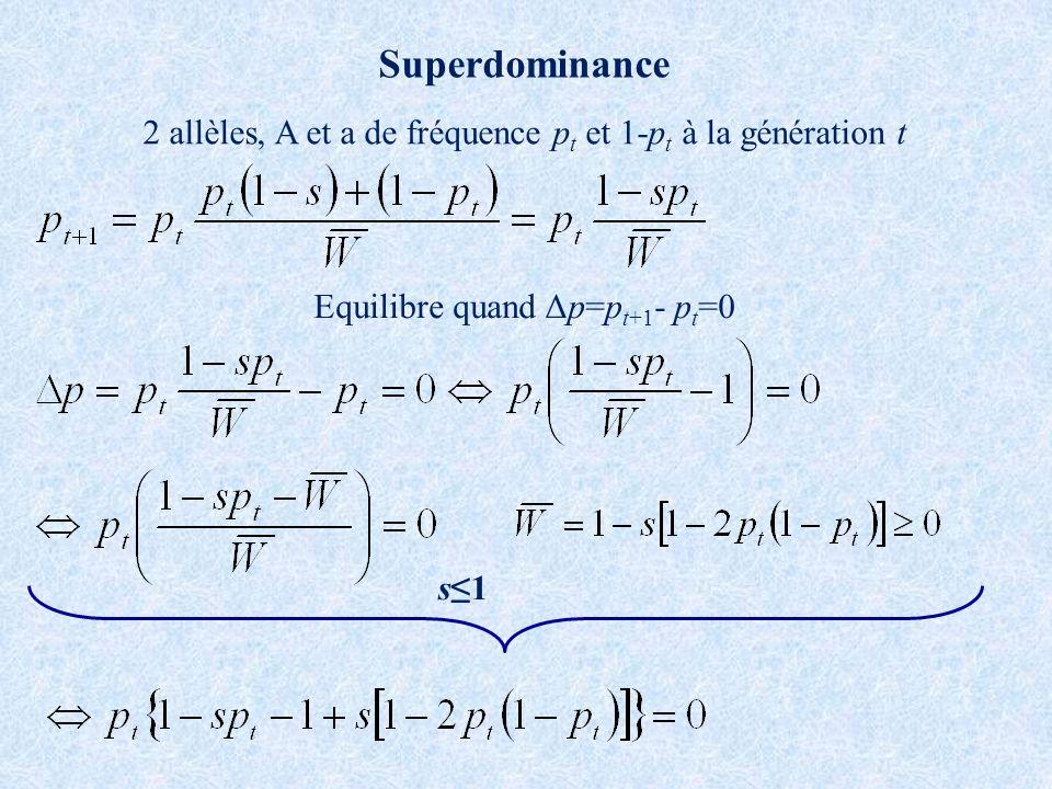 Superdominance 2 allèles, A et a de fréquence pt et 1-pt à la génération t. Equilibre quand Δp=pt+1- pt=0.
