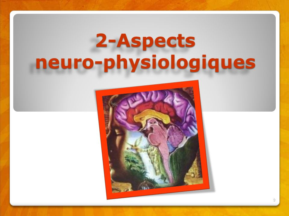 2-Aspects neuro-physiologiques