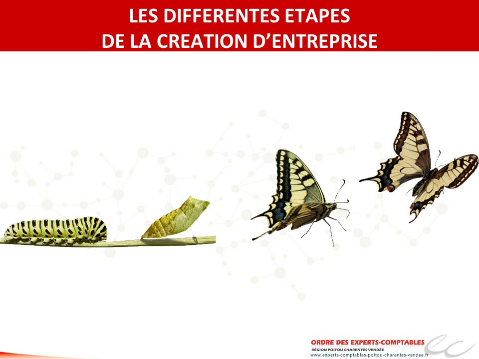 LES DIFFERENTES ETAPES DE LA CREATION D'ENTREPRISE