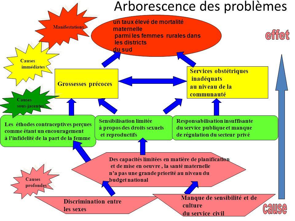Arborescence des problèmes