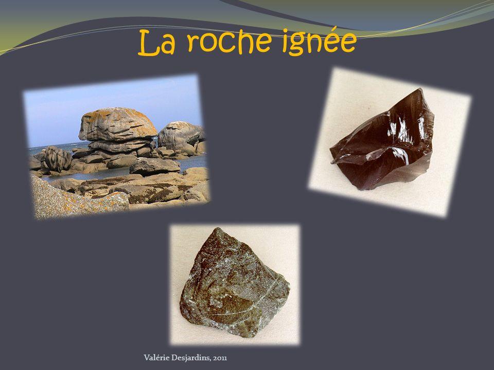 La roche ignée Valérie Desjardins, 2011