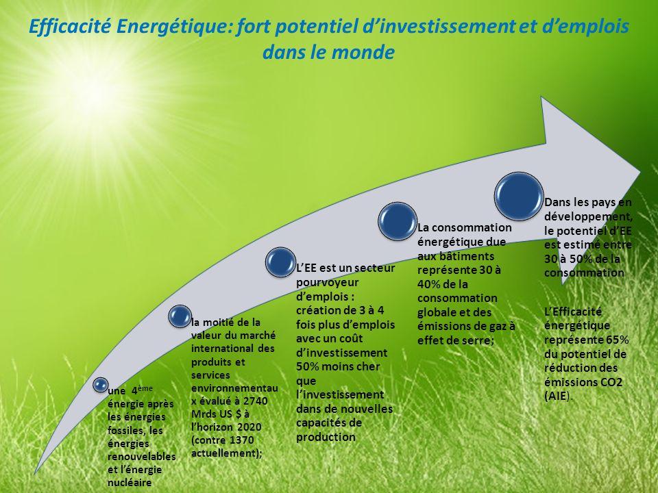 Efficacité Energétique: fort potentiel d'investissement et d'emplois dans le monde