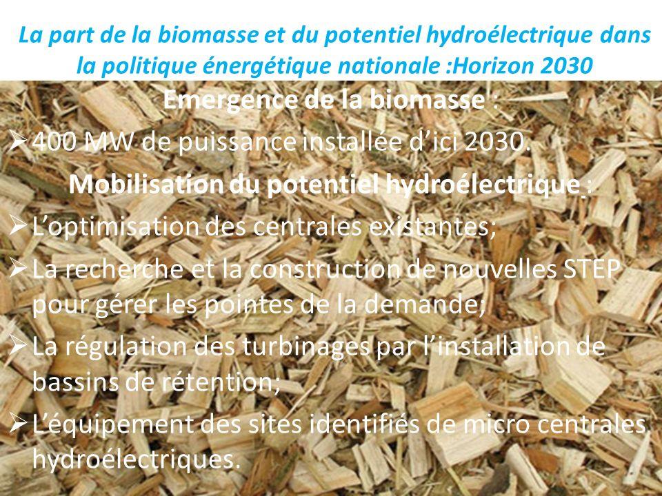 Emergence de la biomasse : 400 MW de puissance installée d'ici 2030.