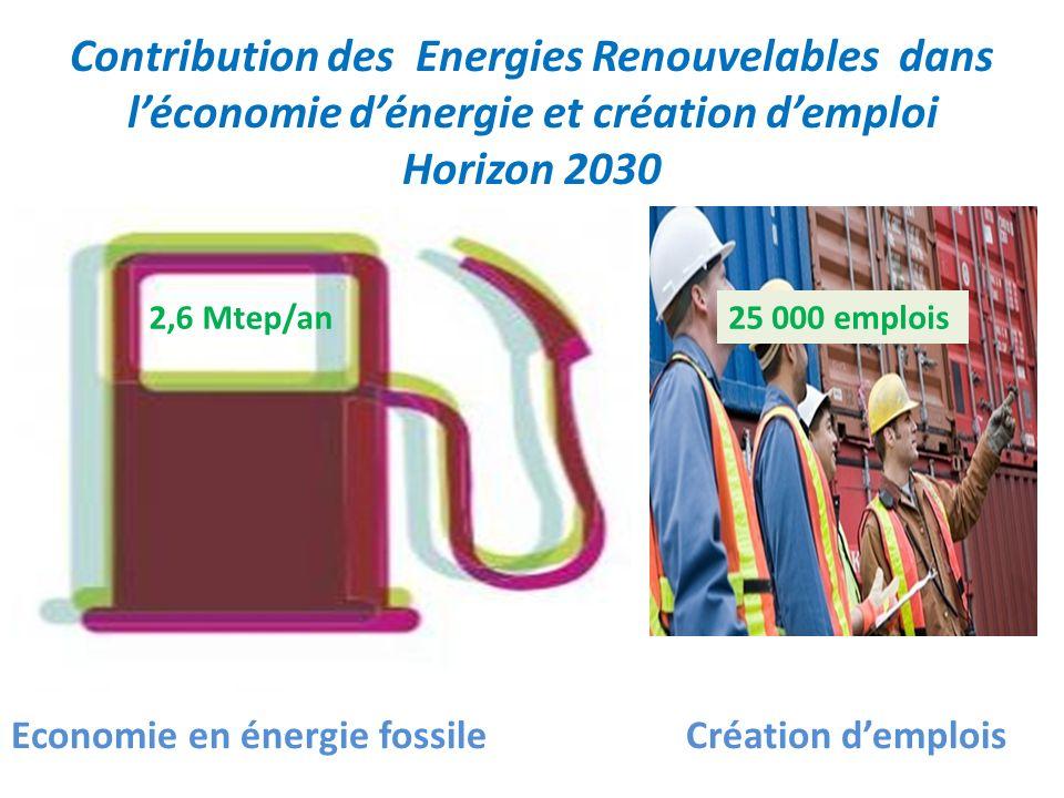 Contribution des Energies Renouvelables dans l'économie d'énergie et création d'emploi Horizon 2030