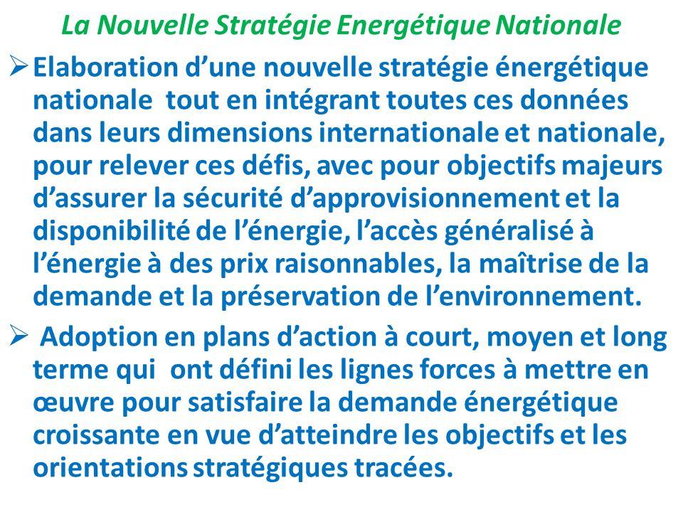 La Nouvelle Stratégie Energétique Nationale
