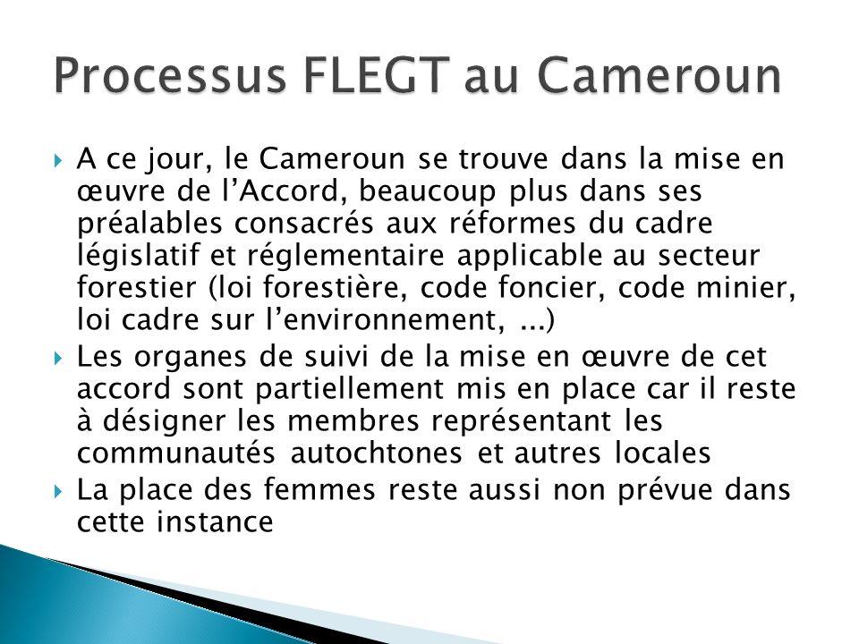 Processus FLEGT au Cameroun