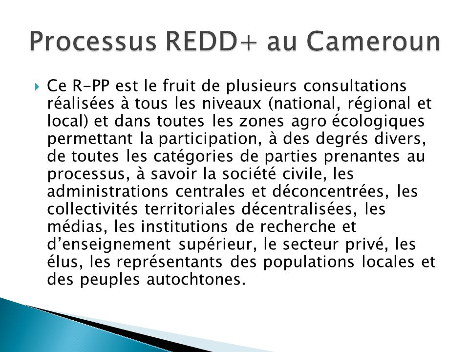 Processus REDD+ au Cameroun