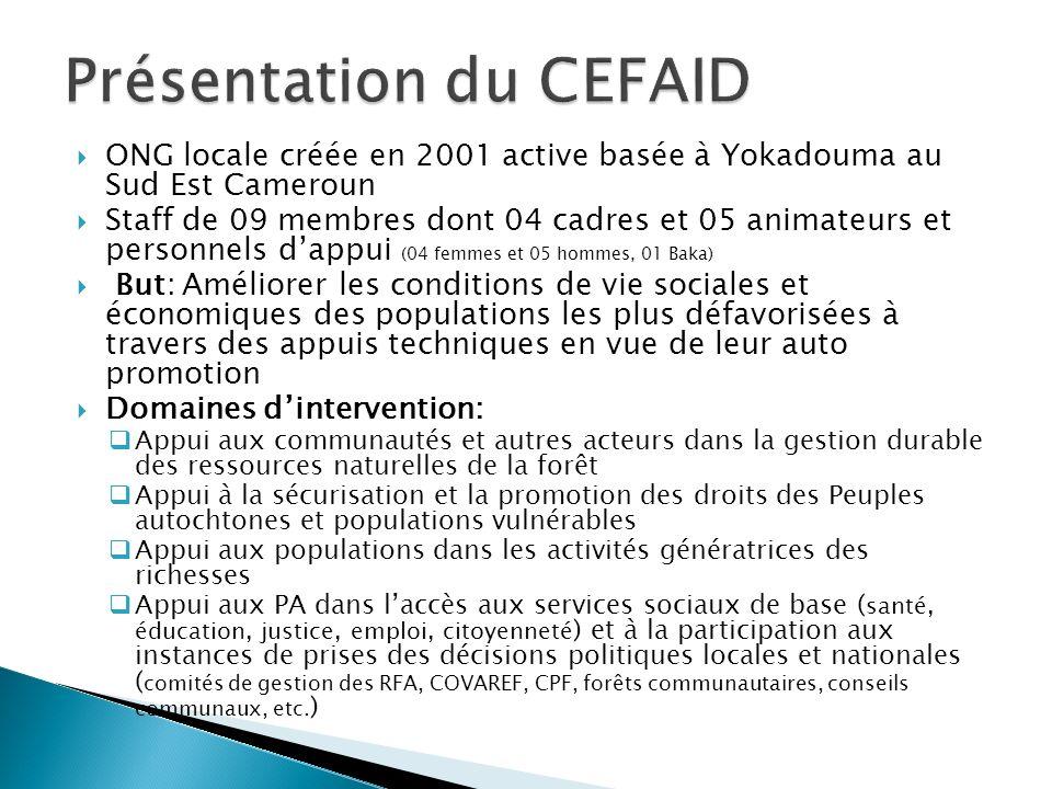Présentation du CEFAID