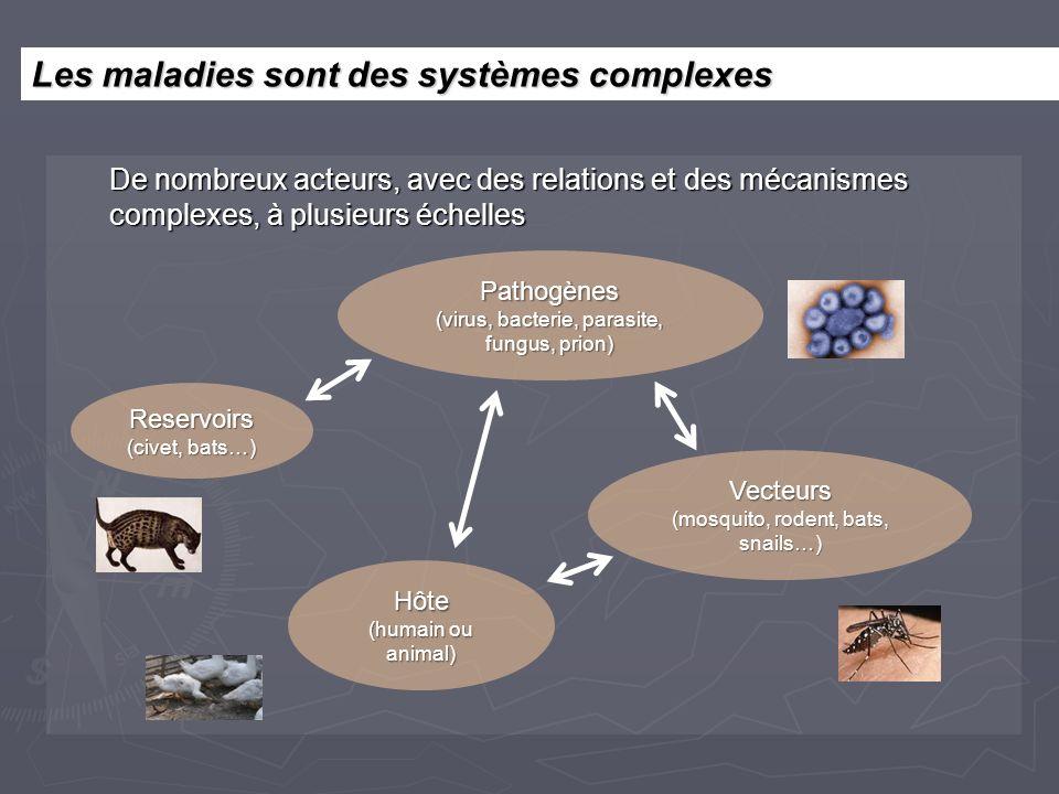 Les maladies sont des systèmes complexes