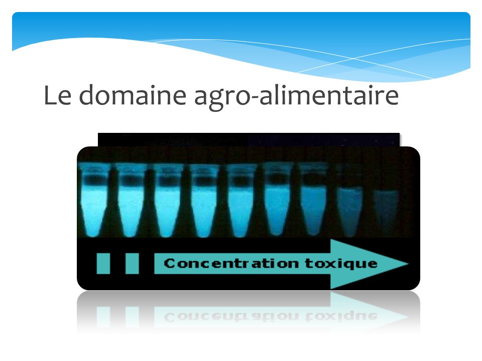 Le domaine agro-alimentaire