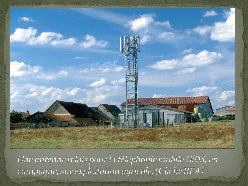 Une antenne relais pour la téléphonie mobile GSM, en campagne, sur exploitation agricole.