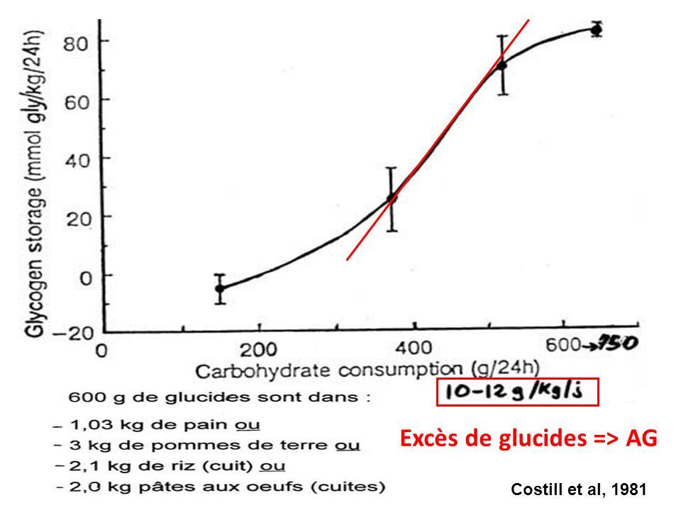 Excès de glucides => AG
