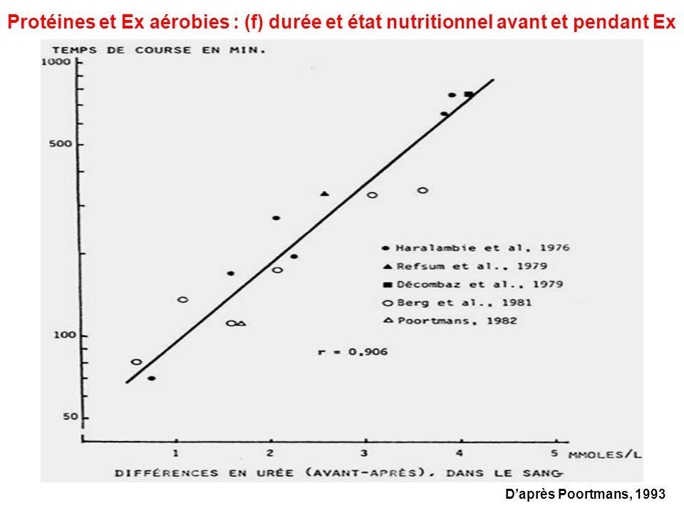 Protéines et Ex aérobies : (f) durée et état nutritionnel avant et pendant Ex
