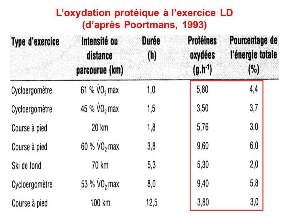 L'oxydation protéique à l'exercice LD (d'après Poortmans, 1993)