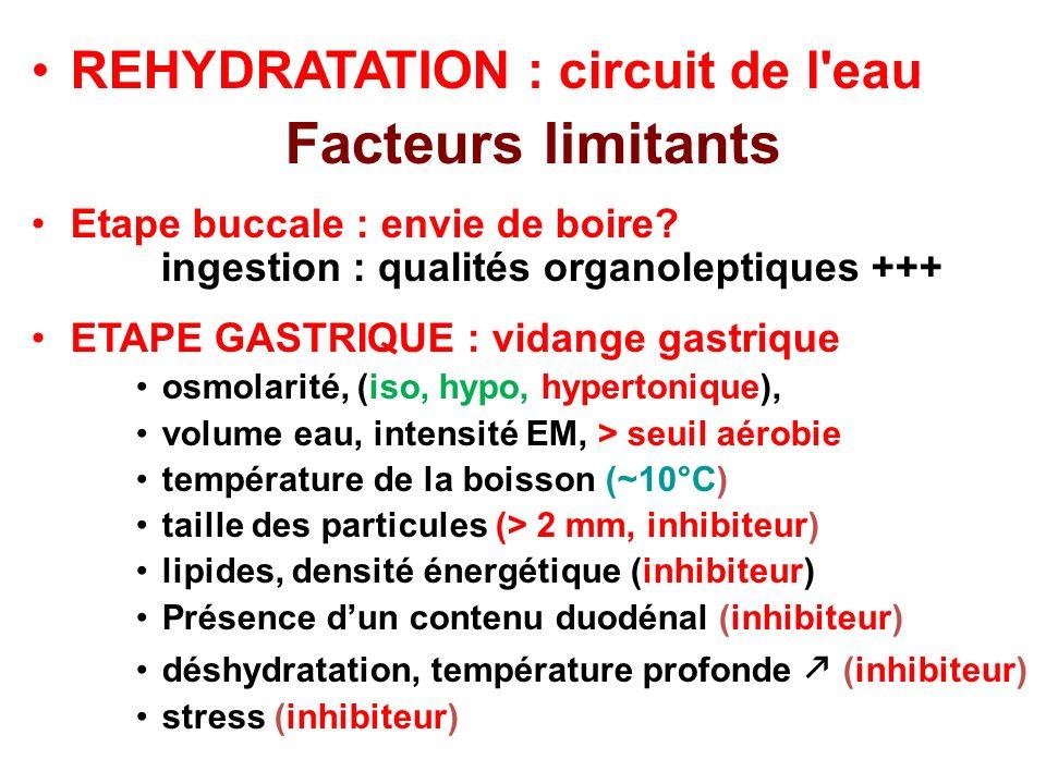 Facteurs limitants REHYDRATATION : circuit de l eau