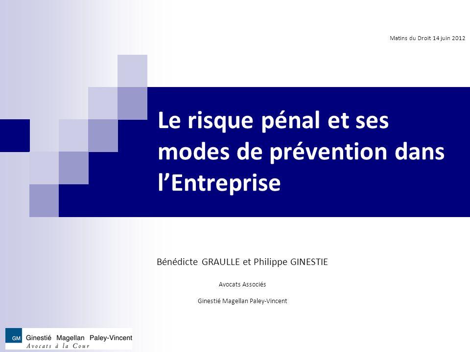 Le risque pénal et ses modes de prévention dans l'Entreprise