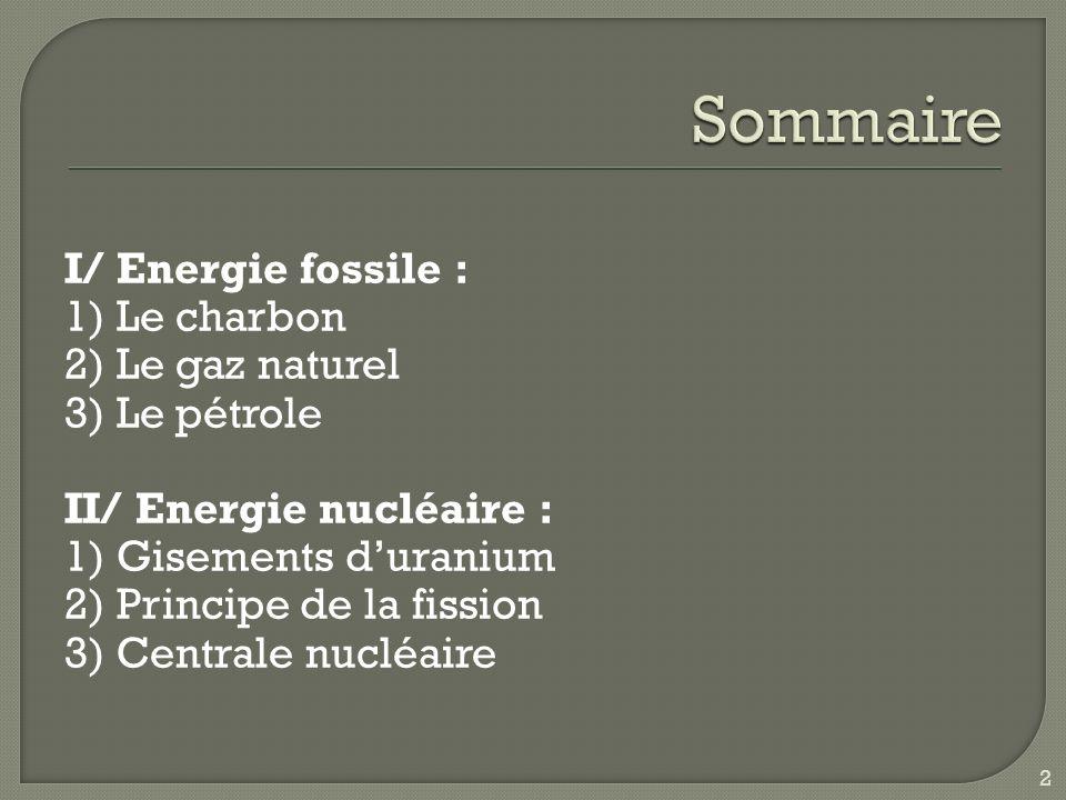 Sommaire I/ Energie fossile : 1) Le charbon 2) Le gaz naturel