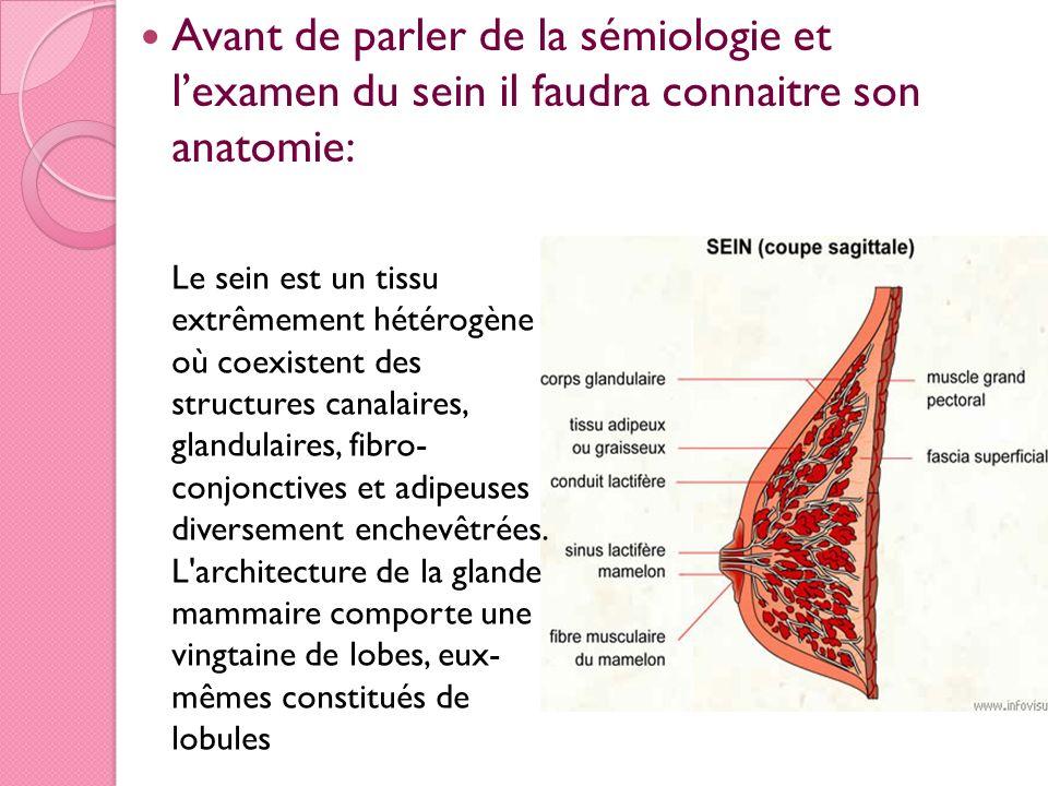 Avant de parler de la sémiologie et l'examen du sein il faudra connaitre son anatomie: