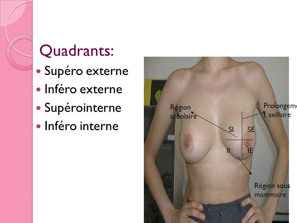 Quadrants: Supéro externe Inféro externe Supérointerne Inféro interne