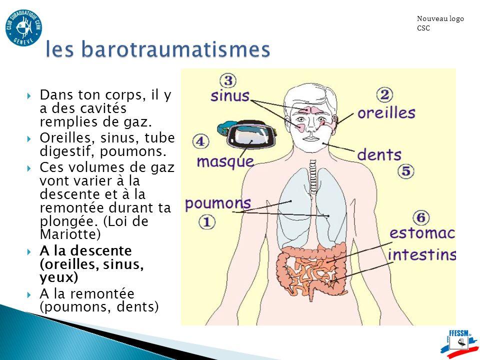 Nouveau logo CSC les barotraumatismes. Dans ton corps, il y a des cavités remplies de gaz. Oreilles, sinus, tube digestif, poumons.