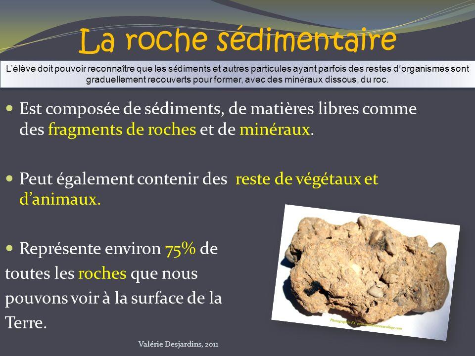 La roche sédimentaire