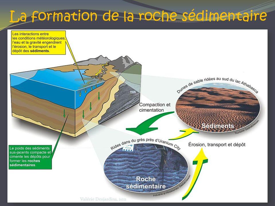 La formation de la roche sédimentaire