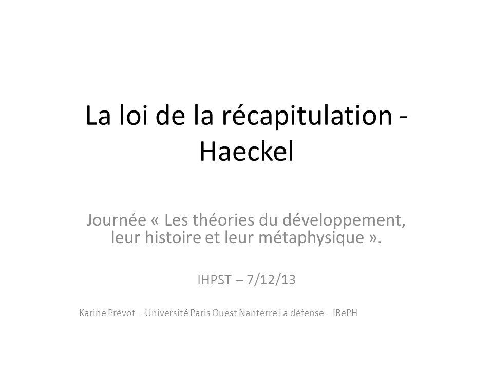 La loi de la récapitulation - Haeckel