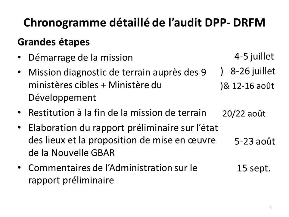 Chronogramme détaillé de l'audit DPP- DRFM