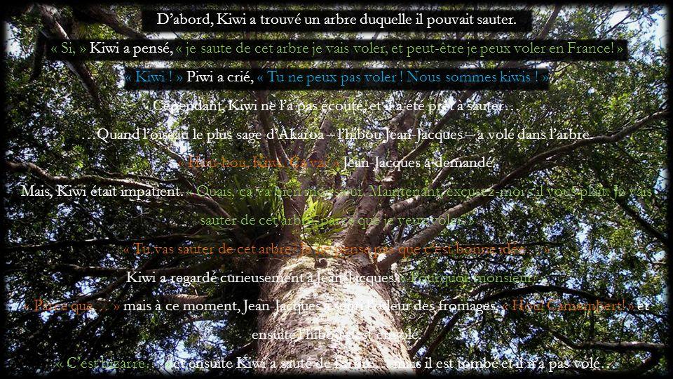 D'abord, Kiwi a trouvé un arbre duquelle il pouvait sauter.
