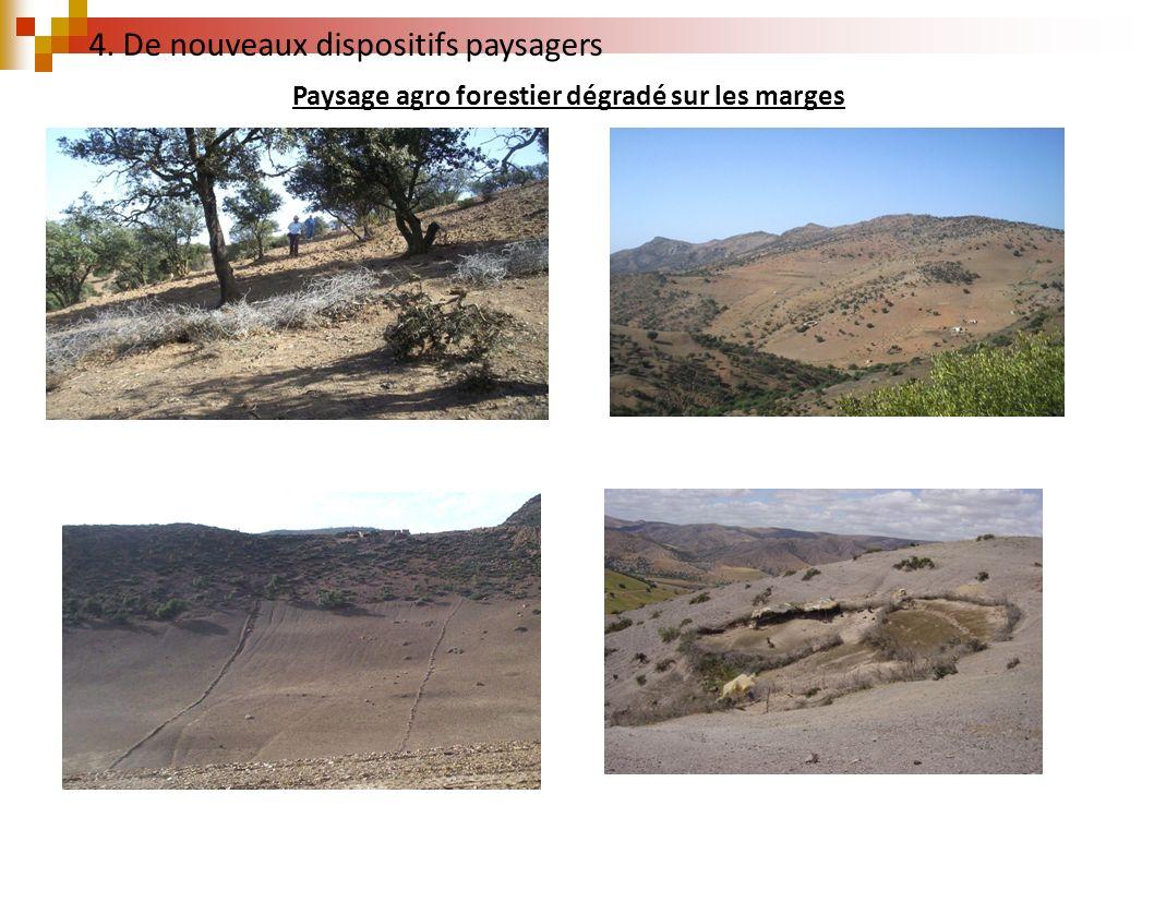 Paysage agro forestier dégradé sur les marges