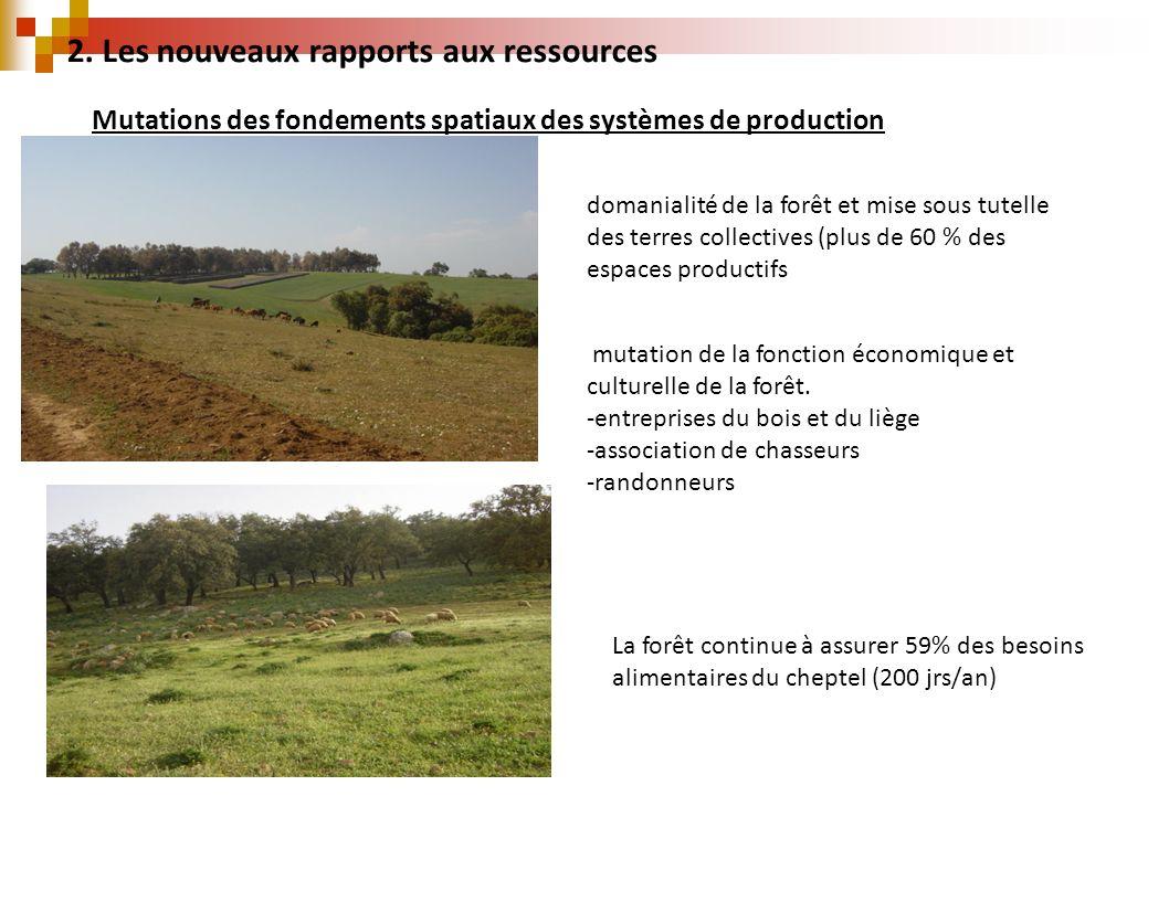 2. Les nouveaux rapports aux ressources